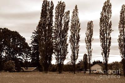 Farm Photograph - Far Away by Tanya  Searcy