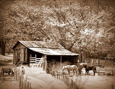 Farm And Barn Art Print by Marty Koch