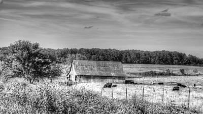 Photograph - Farm Dreams by Julie Clements
