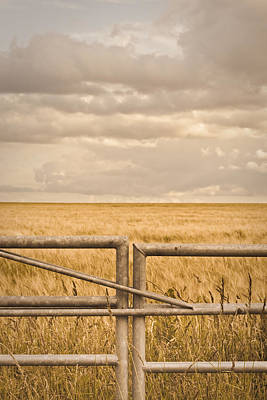 Farm Scenes Photograph - Farm Gate by Tom Gowanlock
