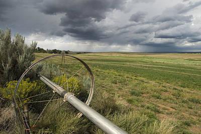 Farm Irrigation Sprinklers Next Art Print by Bill Hatcher