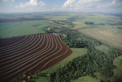 Contour Farming Photograph - Farming Region With Forest Remnants by Claus Meyer