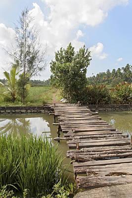 Rickety Bridge Photograph - Farmland Footbridge by Kantilal Patel