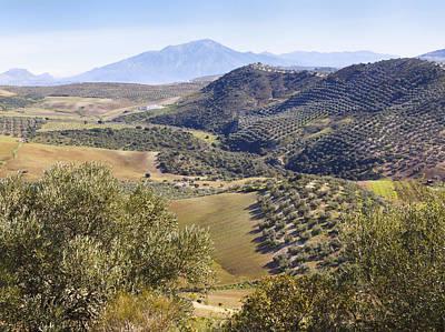 Farmland Near Casabermeja, Spain. Art Print by Ken Welsh