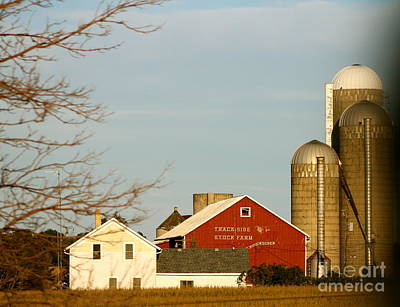 Photograph - Farmland by Pamela Walrath