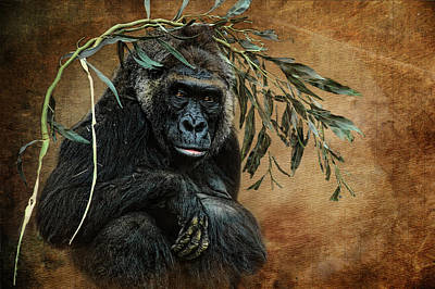 Gorilla Mixed Media - Fashion Sense by Richard Shelton