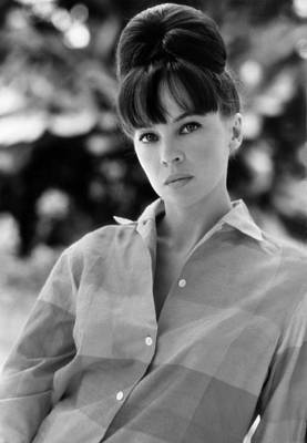 1964 Movies Photograph - Father Goose, Leslie Caron, 1964 by Everett