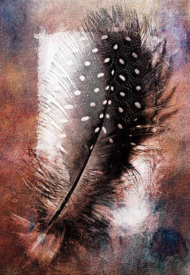 Feather Print by Mauro Celotti