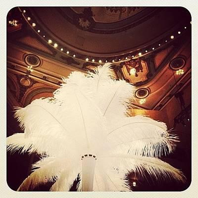 Decor Photograph - Feathered Centerpiece by Natasha Marco