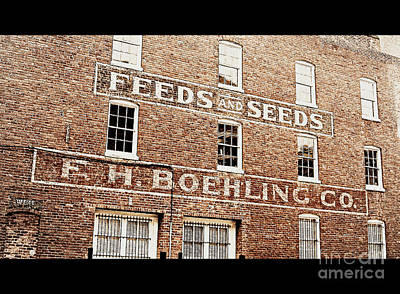 Photograph - Feed And Seed by Nancy Dole McGuigan