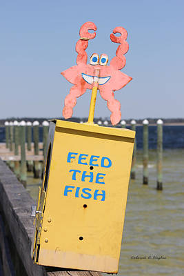 Photograph - Feed The Fish by Deborah Hughes