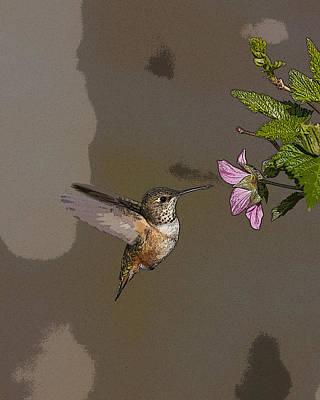 Feeding Rufus Hummingbird- Abstract Art Print by Tim Grams