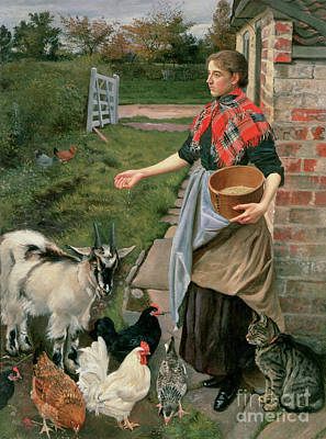 Feeding The Chickens Art Print