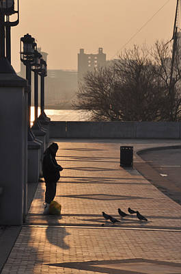Feeding The Pigeons At Dawn Art Print by Bill Cannon
