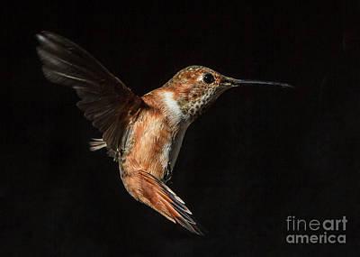 Female In Flight I Art Print by Carl Jackson