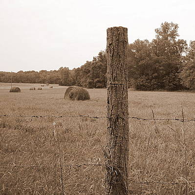 Fence And Field Art Print by Sheila Harnett