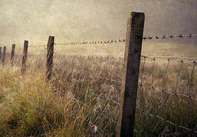 Fence And Field. Trossachs National Park. Scotland Art Print by Jenny Rainbow