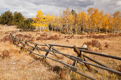 Photograph - Fence At Kenosha Pass by Adam Pender
