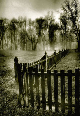 Fence In Fog Art Print by Steven Ainsworth