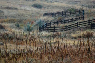 Photograph - Fence Line by Amee Cave