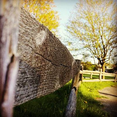 Pathway Photograph - #fence #path #pathway #park #wood by Jess Gowan