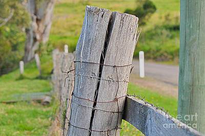 Photograph - Fence Post by Joanne Kocwin