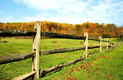 Photograph - Fenced Pasture In Autumn by Kristin Elmquist