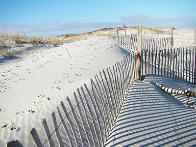 Fences Shadows And Sand Dunes Art Print by Mother Nature