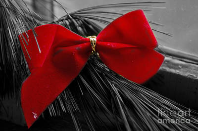 Photograph - Festive Bow by JT Lewis