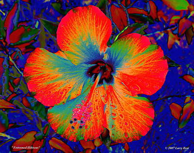 Digital Art - Festonned Hibiscus by Larry Beat