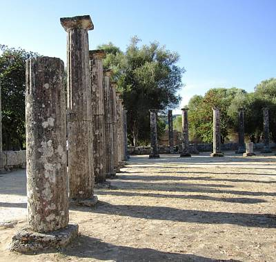 Photograph - Field Of Columns II by John Shiron