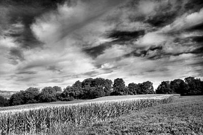 Cornfield Photograph - Field Of Dreams IIi by Steven Ainsworth