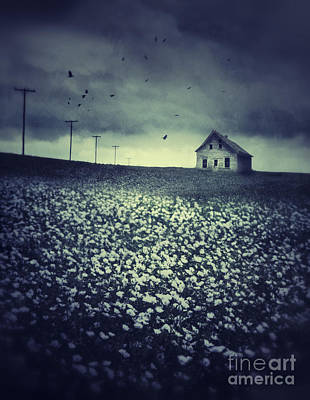 Photograph - Field Of Flax Seed Flowers With Dark Prairie Skies by Sandra Cunningham