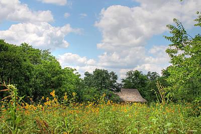 Photograph - Field Of Sunflowers by Sarah Broadmeadow-Thomas