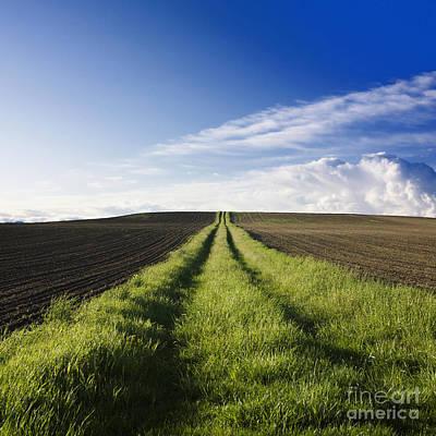 Field Path In Limagne. Auvergne. France. Europe Art Print by Bernard Jaubert