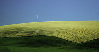 Fields And Quarter Moon Art Print by Dale Stillman