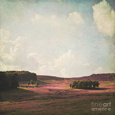Fields Of Heather Art Print by Lyn Randle