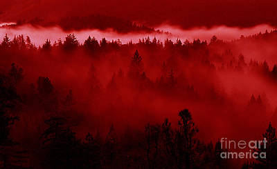 Burning Mixed Media - Fiery Forest  by Mike Nellums