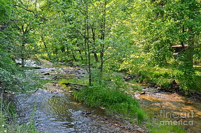 Photograph - Fighting Town Creek by Carol  Bradley