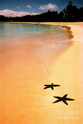 Fiji Beach With Starfish Art Print by Jerome Stumphauzer