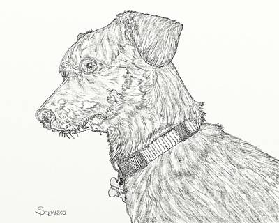 Dachshund Puppy Digital Art - Finn In Black And White by Salvadore Delvisco