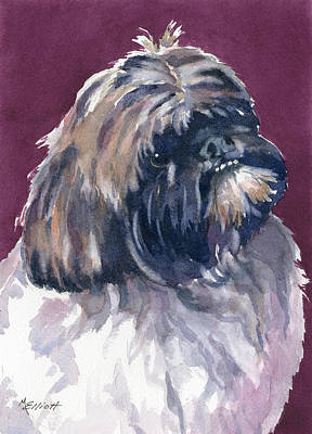 Shih Tzu Painting - Finnigan by Marsha Elliott