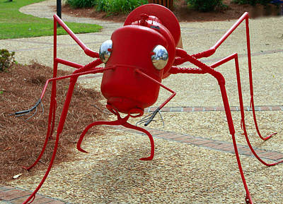 Fire Ant Art Art Print by Danny Jones