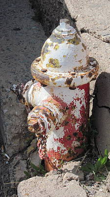 Photograph - Fire Hydrant by Sandy Tracey