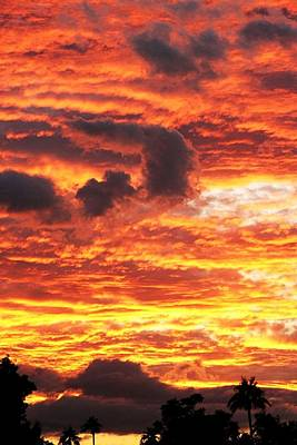 Photograph - Fire In The Sky by Louise Mingua