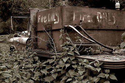 Photograph - Fire Only In Ivy by Lorraine Devon Wilke