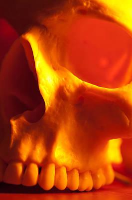 Skulls Photograph - Fire Skull by Alex Rios