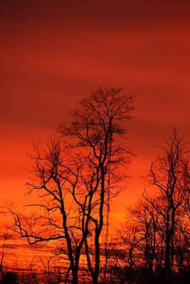 Photograph - Fire Sky by Bonnie Myszka