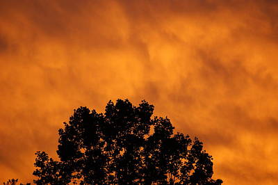 Photograph - Fire Sky by Maria  Wall