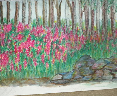 Stonewall Painting - Fireweed By Stonewall by Debbie Wassmann